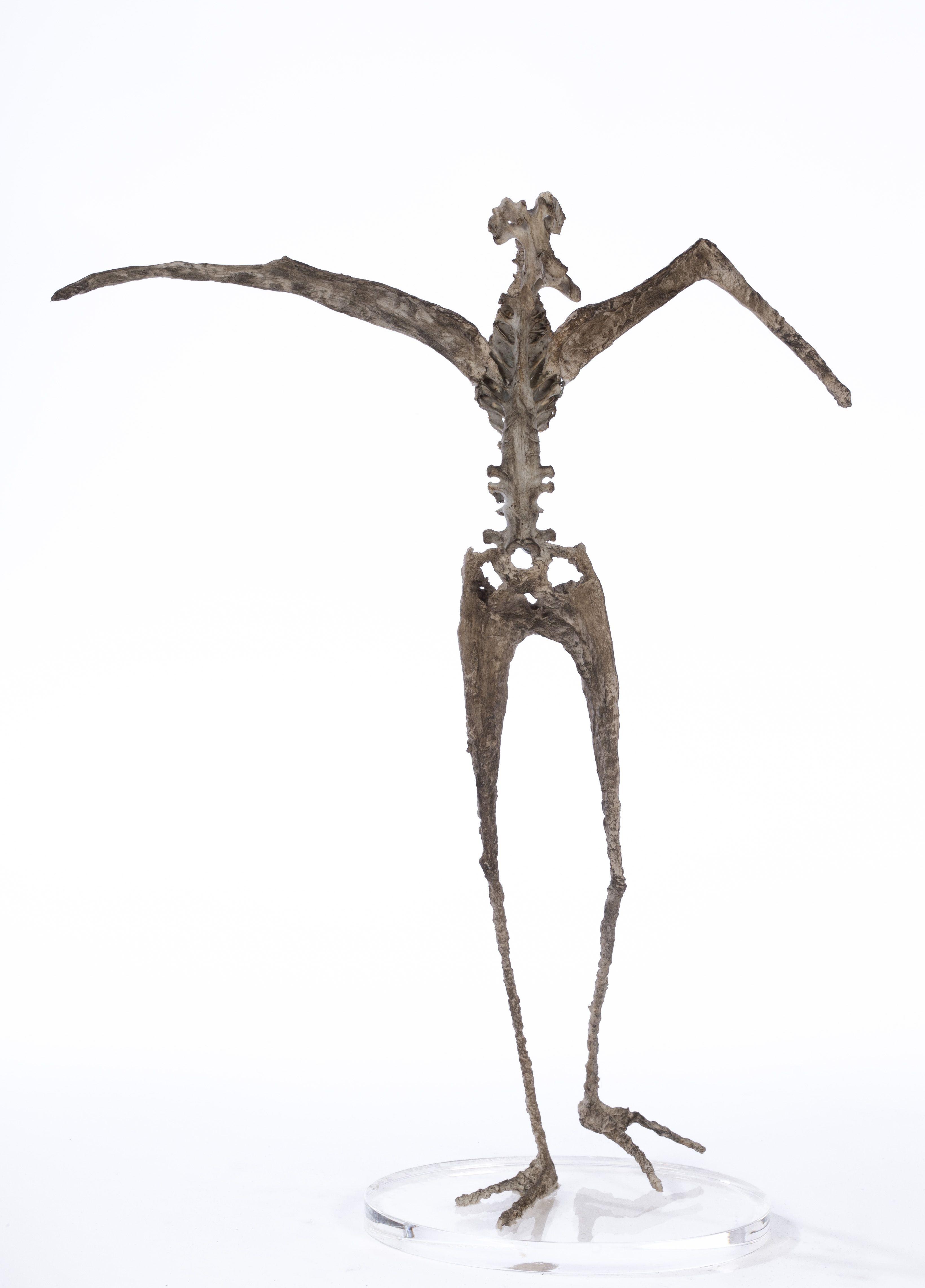 Petit démon ailé - H. 33 cm