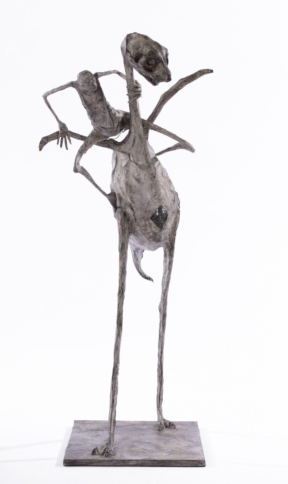 Intrigués - H. 69 cm