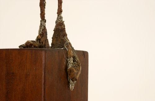 Vénus - Plâtre et bois - H. 73 cm