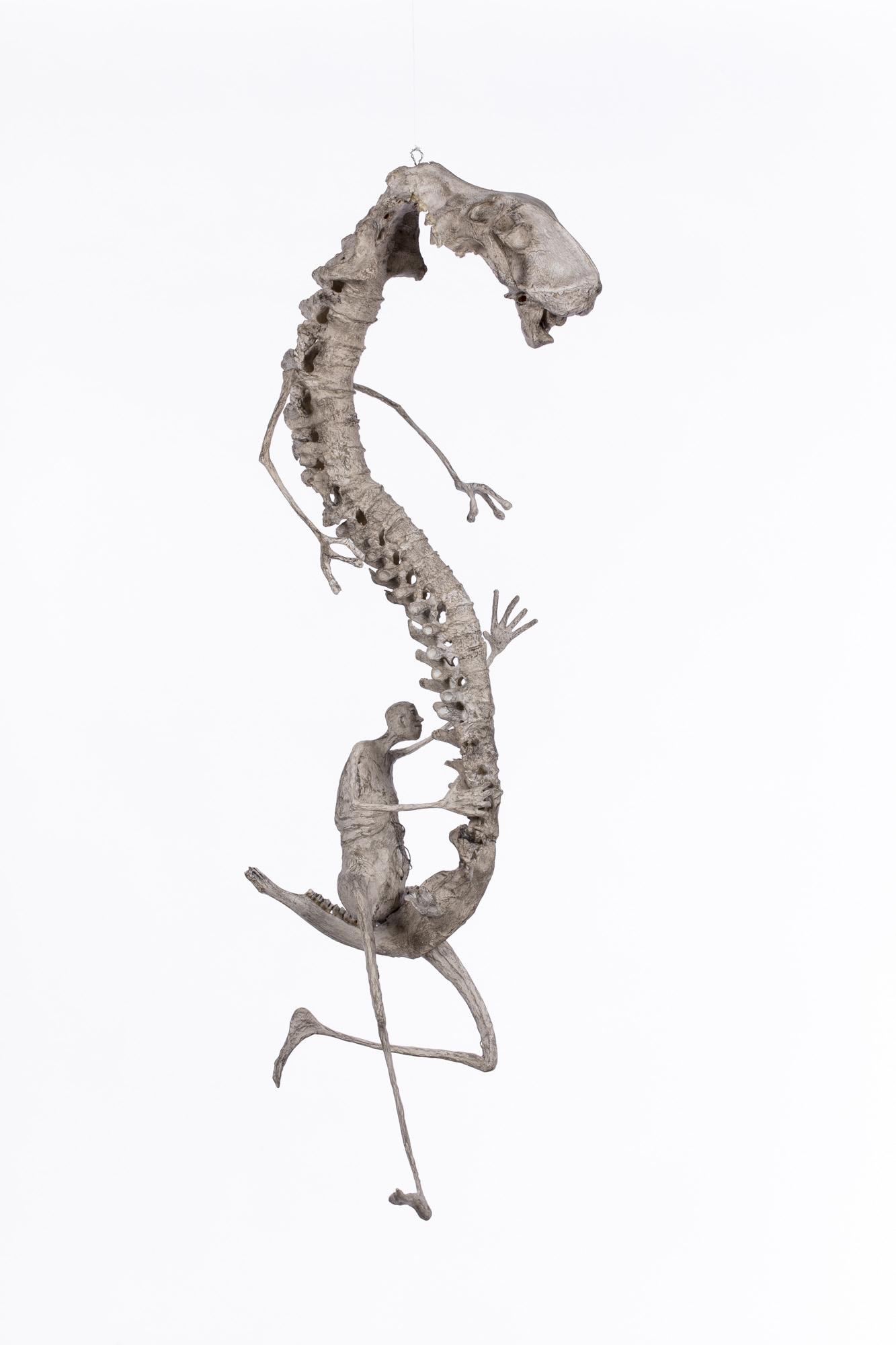 Caracole du chenipatte - H.80 cm environ